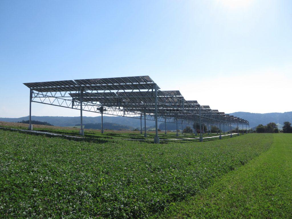 01 Agrophotovoltaik Pilotanlage Heggelbach 1024x768 1 | Photovoltaik Österreich